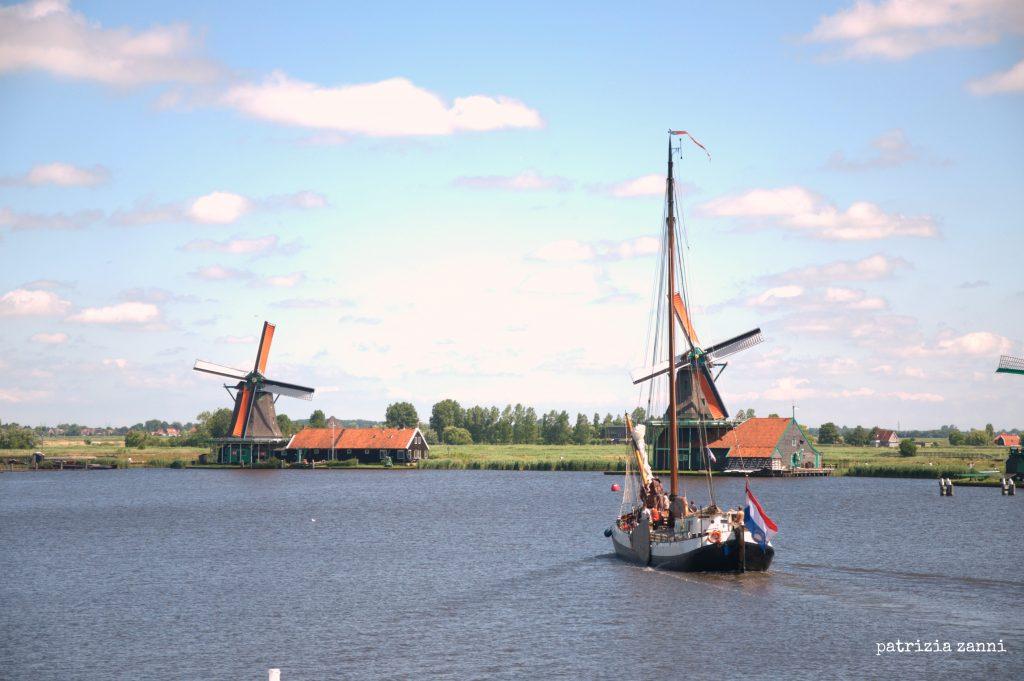 zaandam-panorama-barca