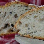 GN delle olive - Pane tutto buchi
